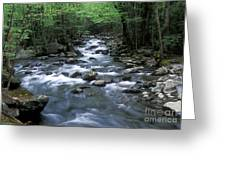 Tranquil Moments On Little Pigeon Creek Greeting Card