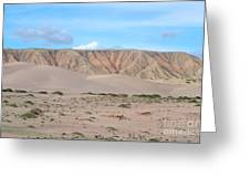 Tranquil Qinghai Desert Mountain In China Greeting Card
