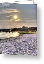 Tranquil Southern Night Greeting Card