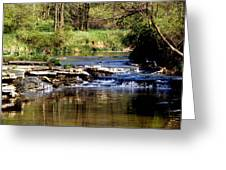Tranquil Stream Greeting Card