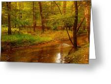 Tranquility Stream - Allaire State Park Greeting Card