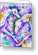 Transcendent Greyhounds Greeting Card