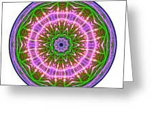 Transition Fcircle Greeting Card