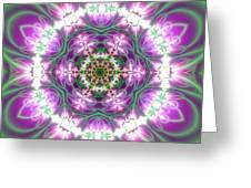 Transition Flower 6 Beats 3 Greeting Card