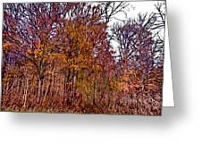 Transitions - Painterly Greeting Card
