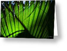 Translucent Green Greeting Card