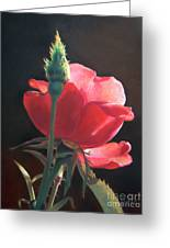Translucent Rose Greeting Card