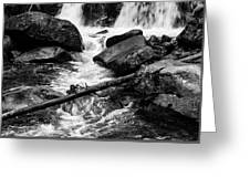 Trap Falls In Ashby Ma Black And White 9 Greeting Card