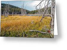 Trap Lake Co Greeting Card by James Steele