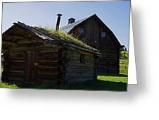 Trappers Cabin Clydesdale Barn Greeting Card