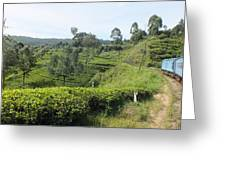 Travelling By Train From Colombo To Badulla Greeting Card
