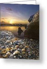 Treasure Cove Greeting Card by Debra and Dave Vanderlaan