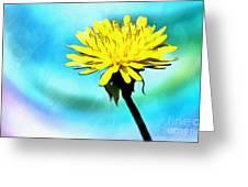Treasure In Nature Greeting Card