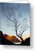 Tree Above Crummock Water Greeting Card