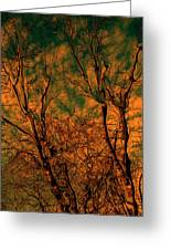 Tree Abstract Greeting Card