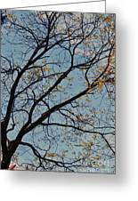 Tree Against The Sky Greeting Card