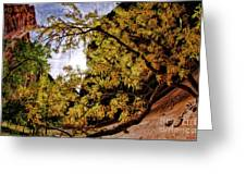 Tree Along Zion Riverside Walk Greeting Card