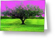 Tree And Color Greeting Card