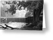 Tree And Dam Greeting Card