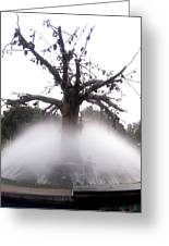 Tree And Fountain Greeting Card