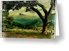 Tree And Mountain Greeting Card