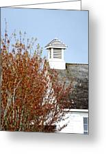 Tree And School House 795 Greeting Card