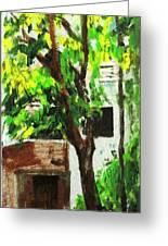 Tree And Shade Greeting Card