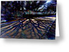 Tree And Shadow Greeting Card