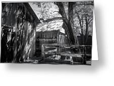 Tree And The Barn Greeting Card