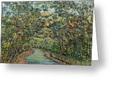 Tree Arched Road Greeting Card
