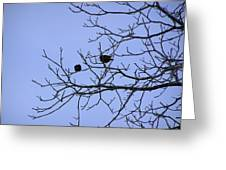 Tree Birds And Sky Greeting Card by Richard Mitchell