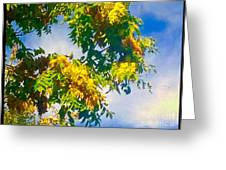 Tree Branch With Leaves In Blue Sky Greeting Card