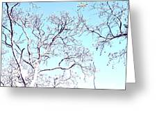 Tree Branches Reaching For Heaven 2 Greeting Card