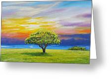 Tree By The Beach Greeting Card