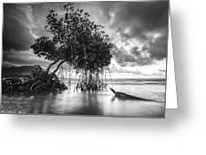 Tree By The Lake Greeting Card