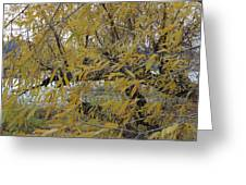 Tree By The Water Greeting Card