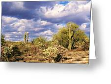 Tree Cactus Greeting Card