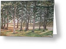 Tree Collection Greeting Card
