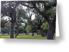 Tree Dance Greeting Card
