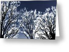 Tree Fantasy 2 Greeting Card