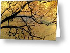 Tree Fantasy 7 Greeting Card