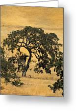 Tree Formation 2 Greeting Card