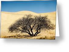 Tree Formation 3 Greeting Card