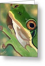 Tree Frog Eyes Greeting Card