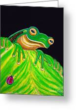 Tree Frog On A Leaf With Lady Bug Greeting Card