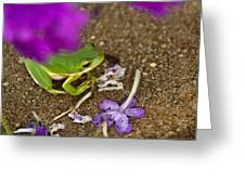Tree Frog Under Flower Greeting Card