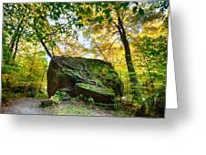 Tree Growing From Living Rock On Smuggler's Notch Greeting Card