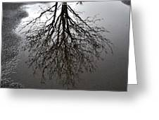 Tree In A Puddle Greeting Card