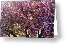 Tree In Pink Greeting Card