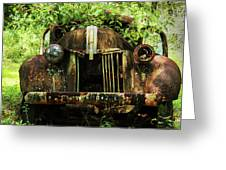 Tree In Truck Greeting Card
